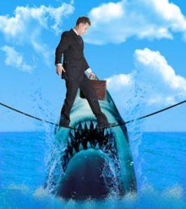 Liability_Shark